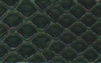 Matte MONACO BLUE Python